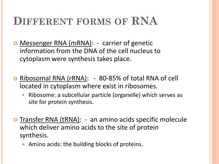 Different forms of RNA