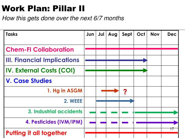 Work Plan: Pillar II
