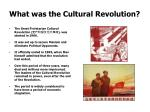 what was the cultural revolution1