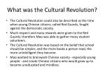 what was the cultural revolution3