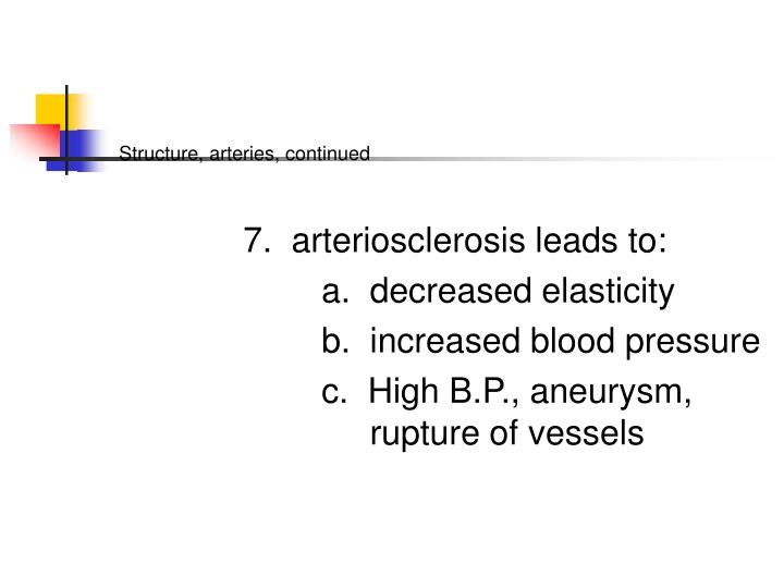 Structure, arteries, continued