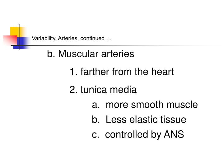 Variability, Arteries, continued …