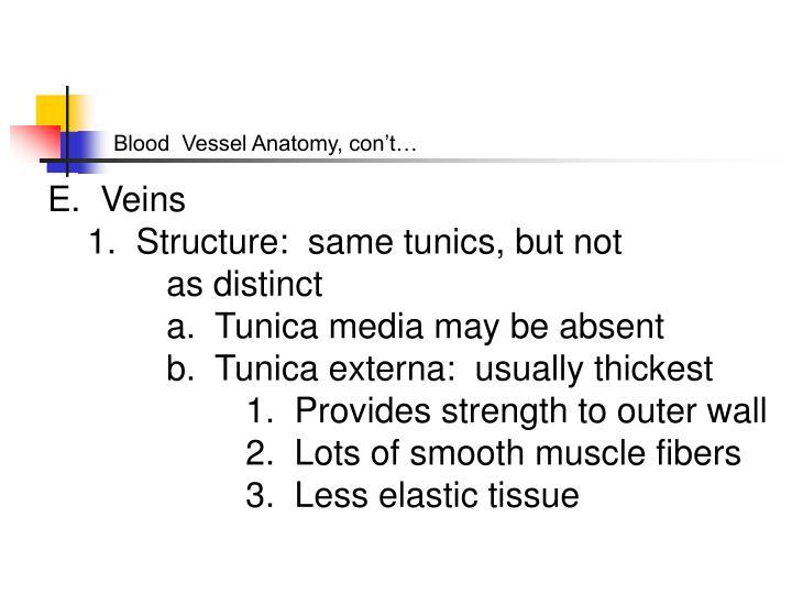 Blood  Vessel Anatomy, con't…