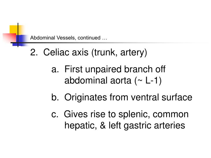 Abdominal Vessels, continued …