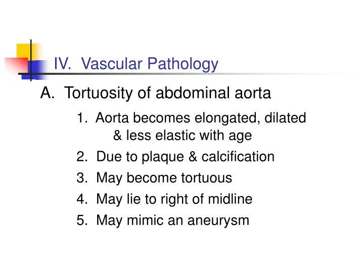 IV.  Vascular Pathology