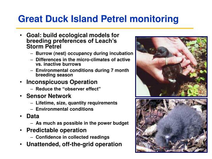 Great Duck Island Petrel monitoring