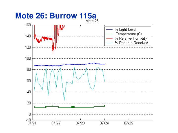 Mote 26: Burrow 115a
