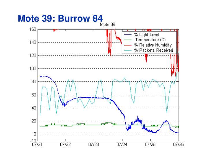 Mote 39: Burrow 84