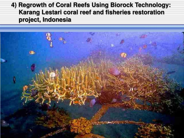 4) Regrowth of Coral Reefs Using Biorock Technology: Karang Lestari coral reef and fisheries restoration project, Indonesia
