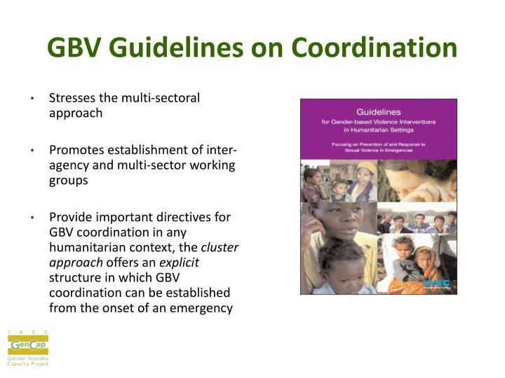 Gbv guidelines on coordination