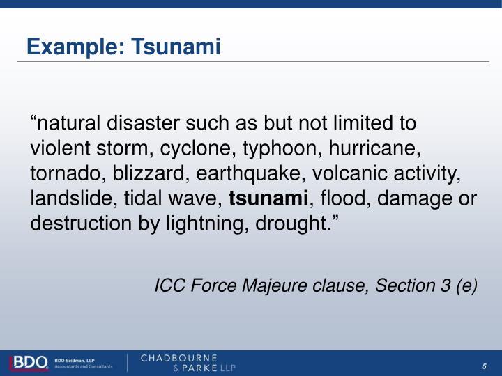 Example: Tsunami