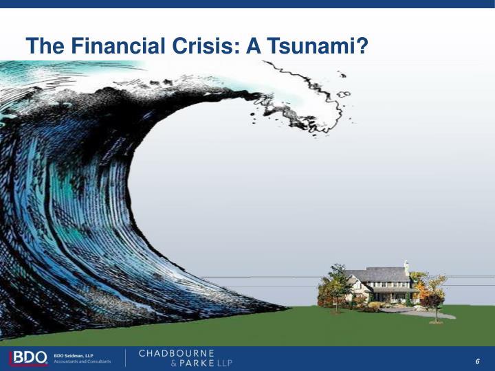 The Financial Crisis: A Tsunami?