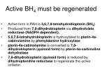 active bh 4 must be regenerated