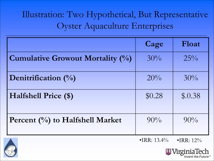 Illustration: Two Hypothetical, But Representative Oyster Aquaculture Enterprises