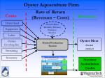 oyster aquaculture firm