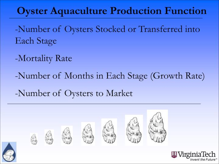 Oyster Aquaculture Production Function
