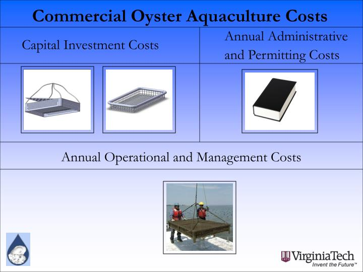 Commercial Oyster Aquaculture Costs