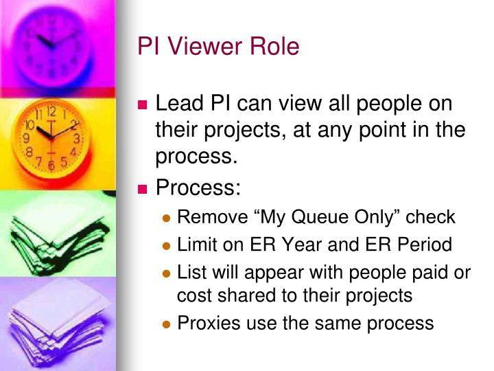 PI Viewer Role