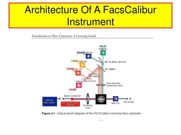 Architecture Of A FacsCalibur Instrument