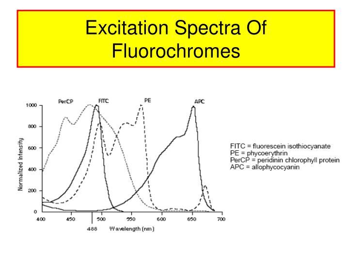 Excitation Spectra Of Fluorochromes
