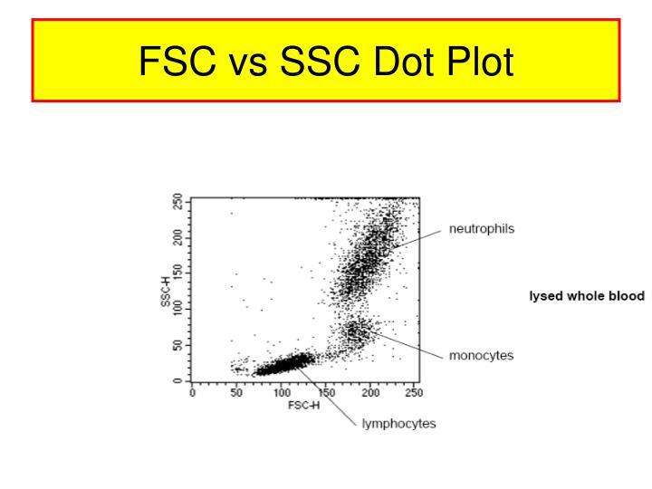 FSC vs SSC Dot Plot