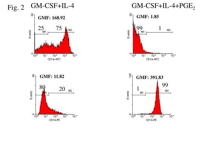GM-CSF+IL-4