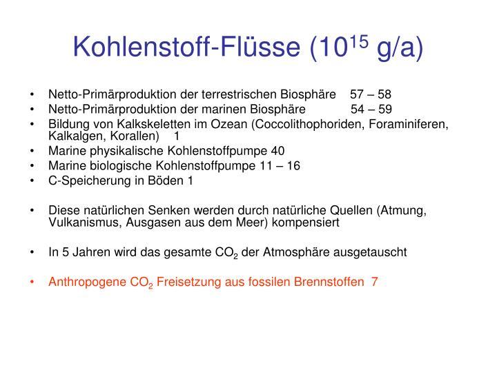 Kohlenstoff-Flüsse (10