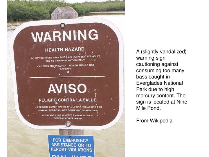 A (slightly vandalized) warning sign cautioning against consuming too many bass caught in Everglades National Park due to high mercury content. The sign is located at Nine Mile Pond.