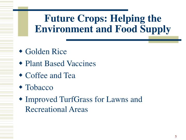Future Crops: Helping the Environment and Food Supply