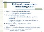 risks and controversies surrounding gmf
