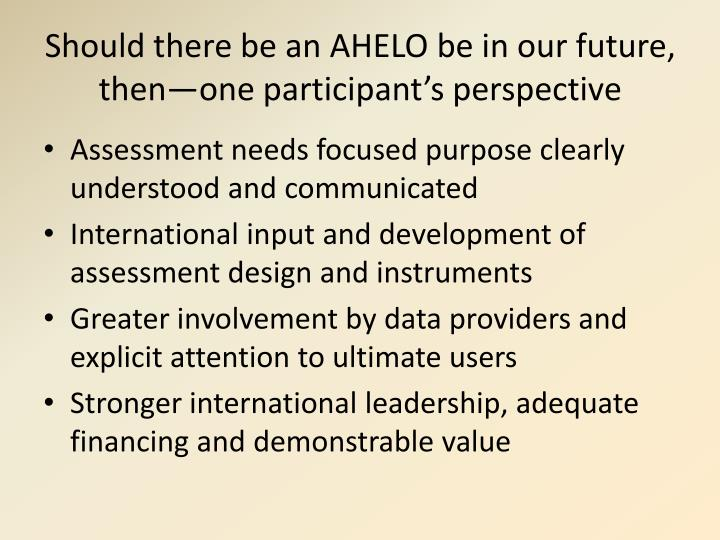 Should there be an AHELO be in our future, then—one participant's perspective