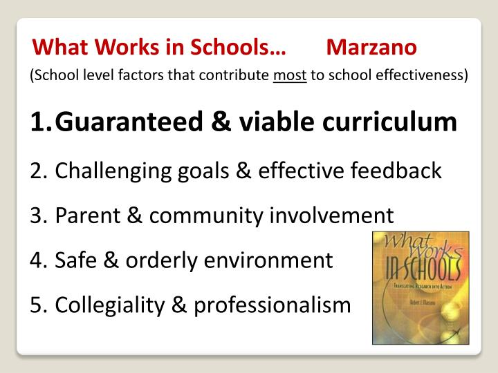 What Works in Schools…