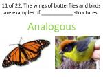 11 of 22 the wings of butterflies and birds are examples of structures