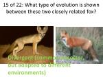 15 of 22 what type of evolution is shown between these two closely related fox