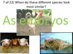 7 of 22 when do these different species look most similar