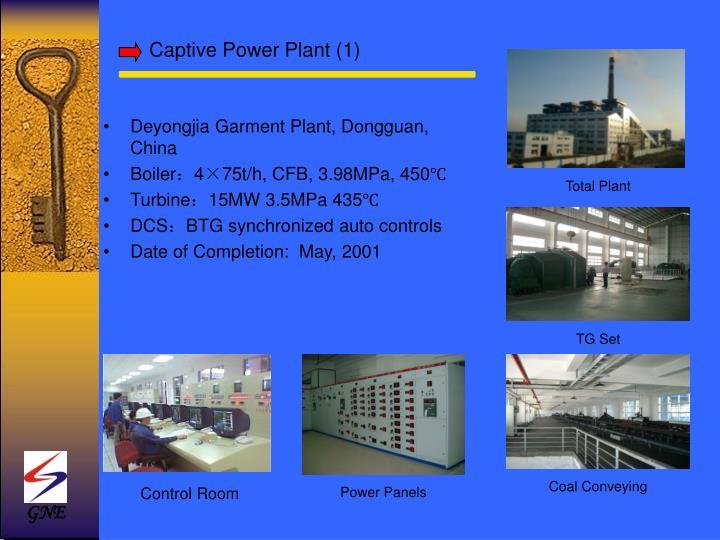 Captive Power Plant (