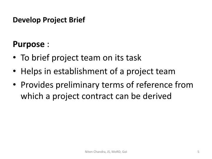 Develop Project Brief