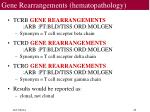 gene rearrangements hematopathology