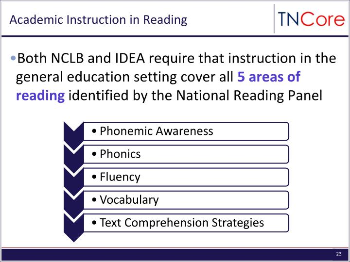 Academic Instruction in Reading