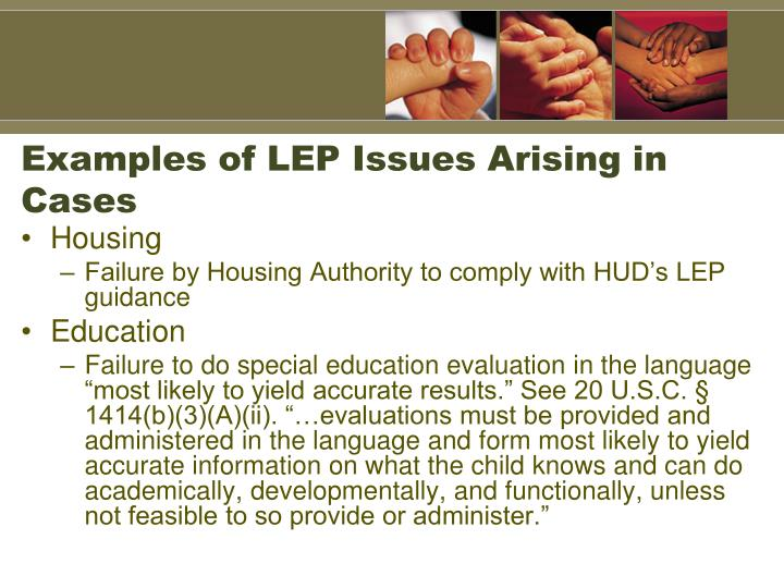 Examples of LEP Issues Arising in Cases