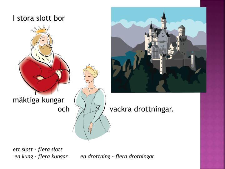 I stora slott bor