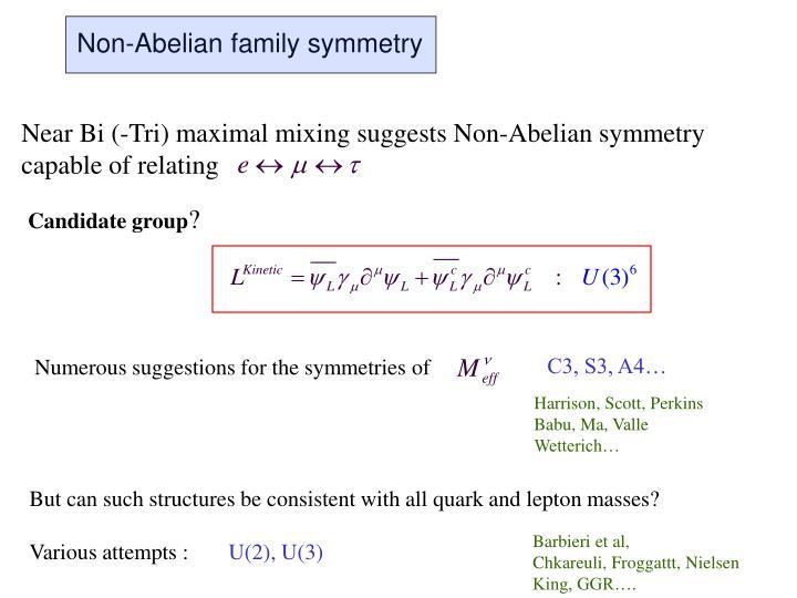 Non-Abelian family symmetry