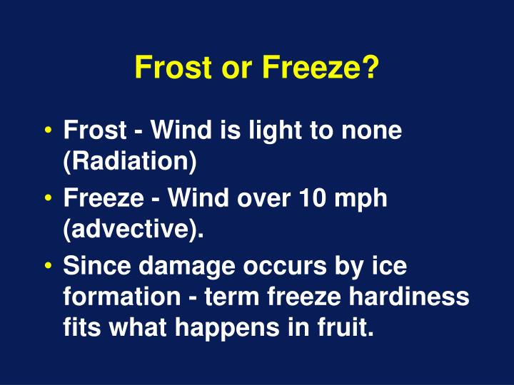 Frost or Freeze?