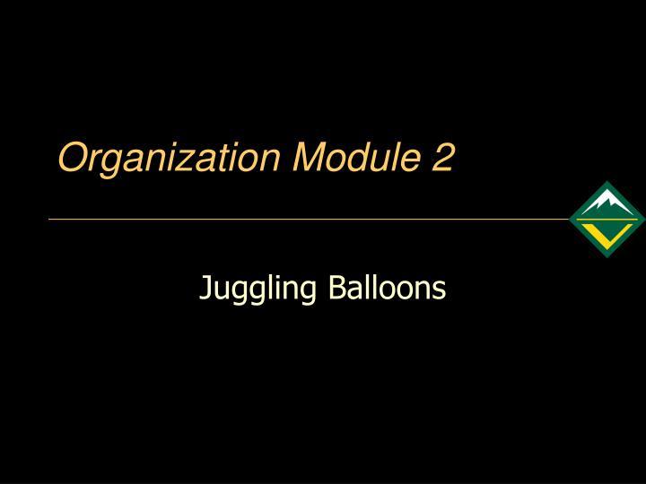 Organization Module 2