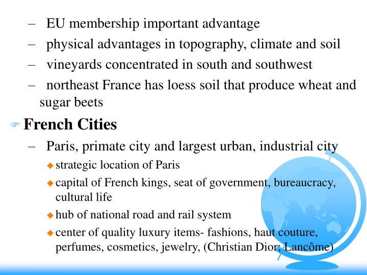 EU membership important advantage