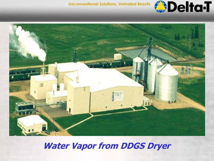 Water Vapor from DDGS Dryer