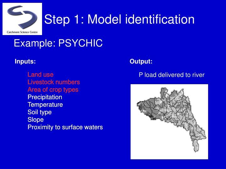 Step 1: Model identification