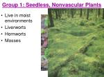 group 1 seedless nonvascular plants