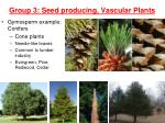 group 3 seed producing vascular plants3