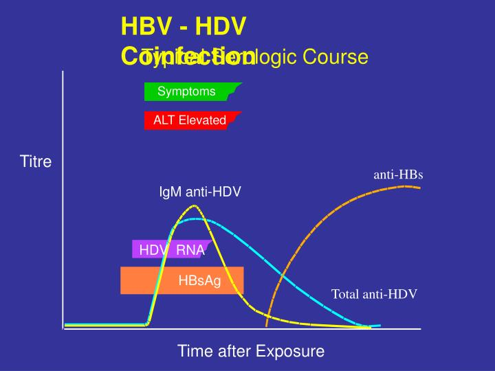 HBV - HDV Coinfection